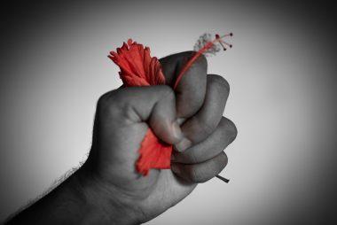 Una mano che stritola un fiore