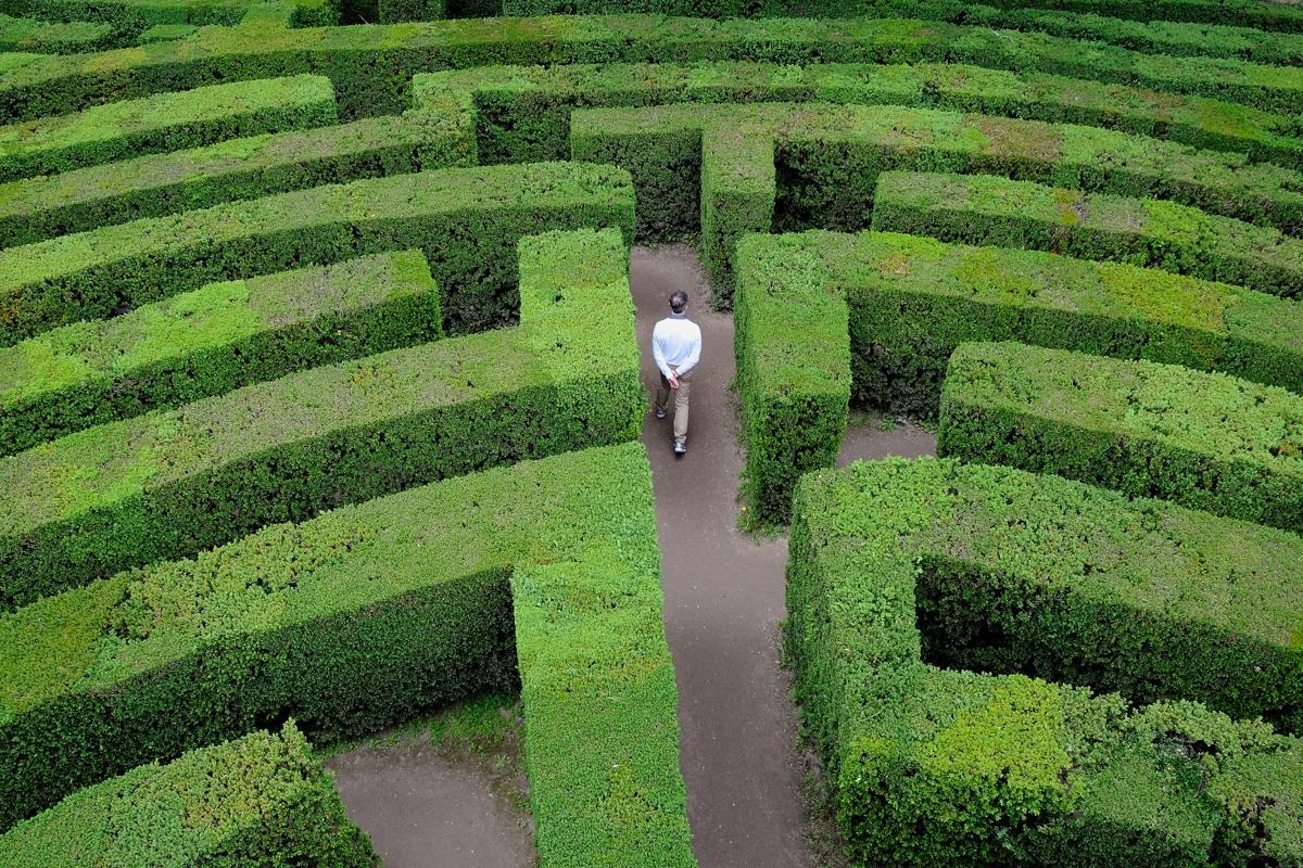 Il labirinto di Villa Pisani a Stra, foto di Guido Andolfato